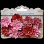 10 fleurs Little Birdie Sérénade Rouge/rose