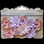 10 fleurs Little Birdie Sérénade Rose/parme