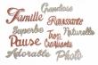 10 mots grand format pailletés argent & bronze lot 1