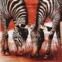 Serviette papier Afrique duo de zèbres