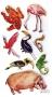 Stickers contours argentés Faune des pays chauds