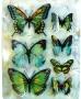 Stickers envol de papillons verts