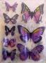 Stickers envol de papillons violets