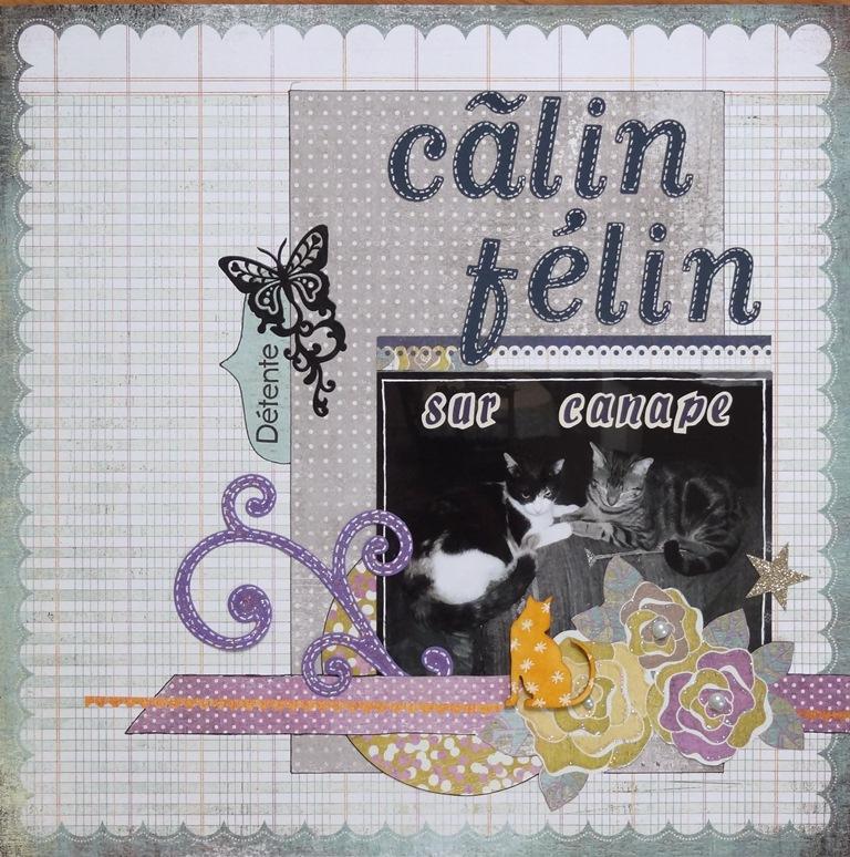 lilou752-calin-felin-sur-canape